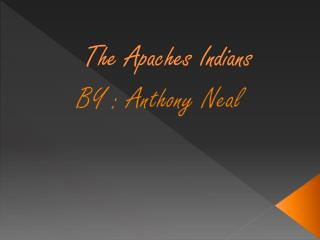 The Apaches Indians