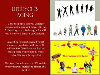 Lifecycles Aging