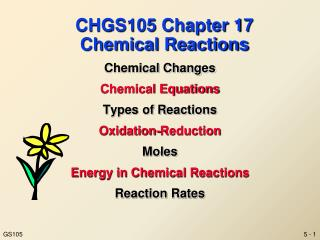CHGS105 Chapter 17 Chemical Reactions