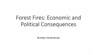 Forest Fires: Economic and Political Consequences