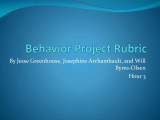 Behavior Project Rubric