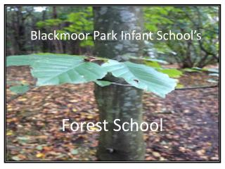 Blackmoor  Park Infant School's