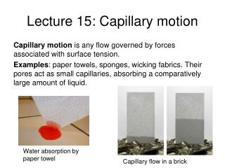 Lecture 15:  Capillary motion
