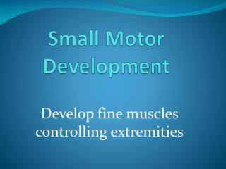 Small Motor Development