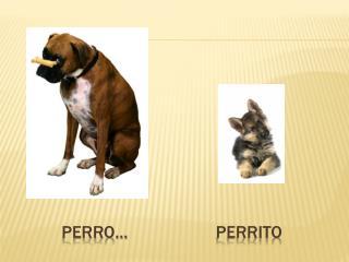 Perro …