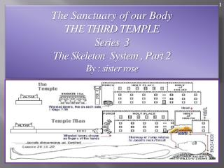 The Sanctuary of our Body THE THIRD TEMPLE Series  3   The Skeleton  System , Part 2