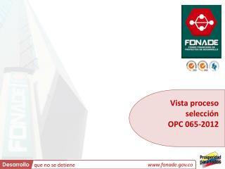 Vista proceso selección  OPC 065-2012