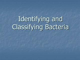 Identifying and Classifying Bacteria