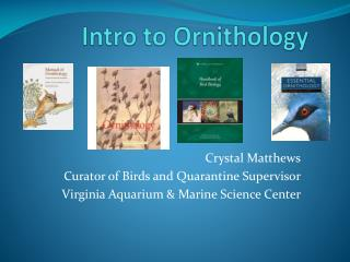Intro to Ornithology