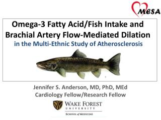 Omega-3 Fatty Acid/Fish Intake and Brachial Artery Flow-Mediated Dilation