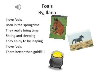 Foals  By,  Ilana