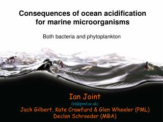 Consequences of ocean acidification for marine microorganisms