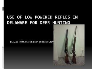 Use of Low  P owered Rifles in Delaware For Deer Hunting