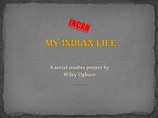 MY  INDIAN  LIFE