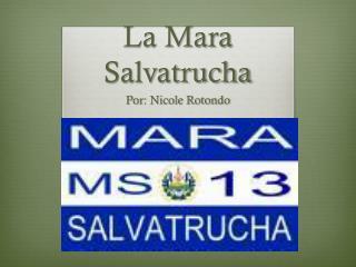 La Mara  Salvatrucha