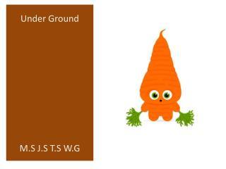 Under  Ground M.S J.S T.S W.G