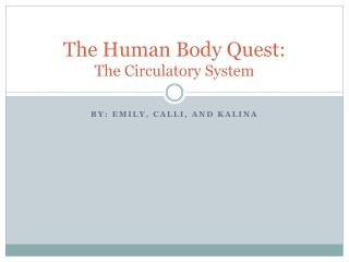 The Human Body Quest: The Circulatory System