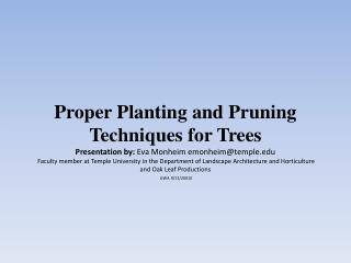 Sources for Tree Information