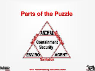 Parts of the Puzzle