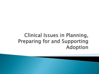 Clinical Issues in Planning, Preparing for and Supporting Adoption