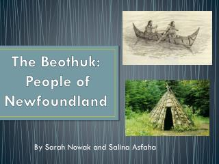 a study on the beothuk people of newfoundland The study declared genetic matches between the beothuk couple and  a close  genetic relationship between beothuk and mi'kmaq people.