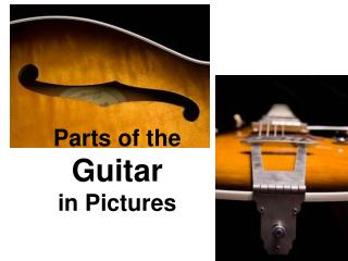 Parts of the  Guitar in Pictures