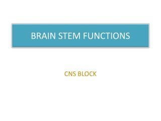 BRAIN STEM FUNCTIONS