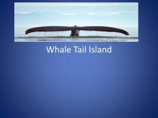 Whale  T ail Island