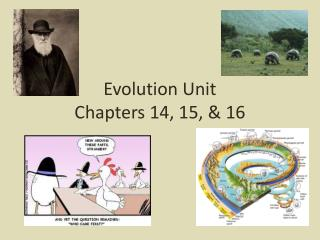 Evolution Unit Chapters 14, 15, & 16