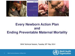 Every Newborn Action Plan  and  Ending Preventable Maternal Mortality