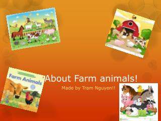 About Farm animals!