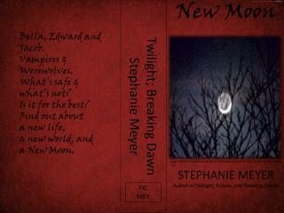 Twilight; Breaking Dawn Stephanie Meyer