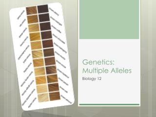 Genetics: Multiple Alleles