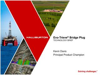 Evo-Trieve ®  Bridge  Plug TECHNOLOGY BRIEF