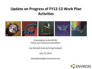 Update on  Progress of FY12-13 Work Plan Activities