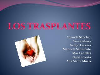 Yolanda Sánchez Sara Galmés Sergio Caceres Manuela Sarmiento Mar Cañellas Nuria Iniesta