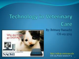 Technology in Veterinary Care
