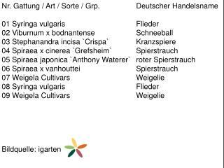 Nr. Gattung / Art / Sorte /  Grp .  Deutscher Handelsname 01  Syringa vulgaris Flieder