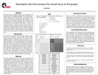 Descriptive title that conveys the overall focus of the project