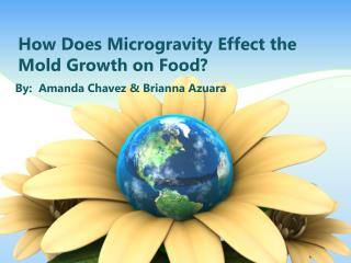 How Does Microgravity  E ffect the Mold  G rowth on Food?