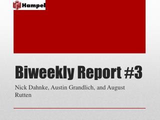 Biweekly Report #3