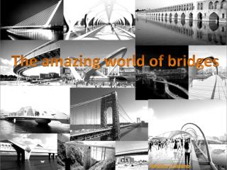 The amazing world  of bridges