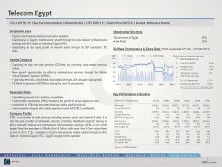 Investment case Egypt's sole fixed-line telecommunication operator.