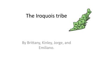 The Iroquois tribe