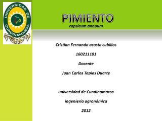 capsicum annuum Cristian Fernando acosta cubillos 160211101 Docente Juan Carlos Tapias Duarte