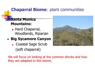 Chaparral Biome: plant communities