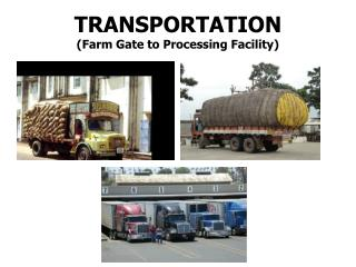 TRANSPORTATION (Farm Gate to Processing Facility)