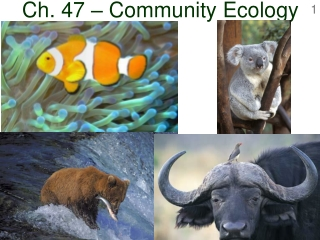 Chapter 52 Introduction to Ecology   Habitat and Species Diversity