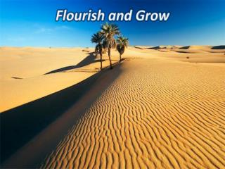 Flourish and Grow