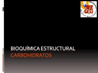 Bioquímica ESTRUCTURAL carbohidratos